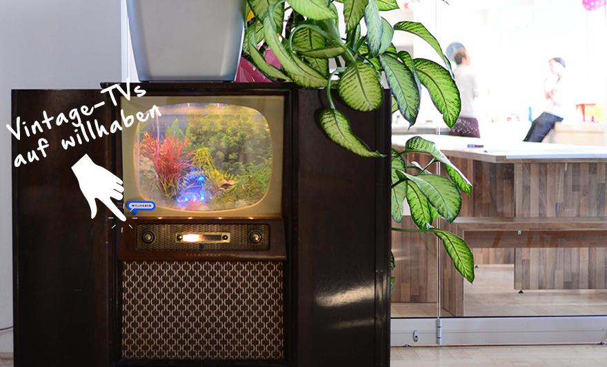 Es gibt Sachen, die gibt's nicht: Aquarium im Vintage-TV, natürlich von willhaben.
